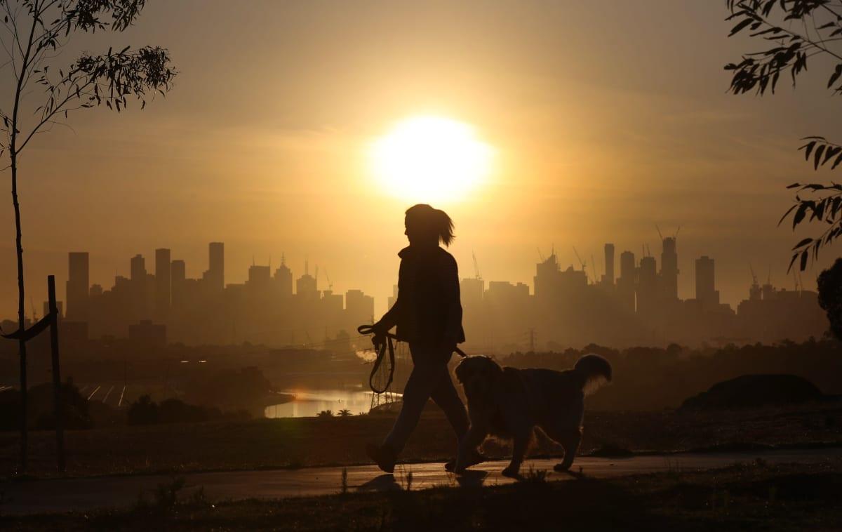 Nainen ulkoiluttaa koiraa Melbournessa.