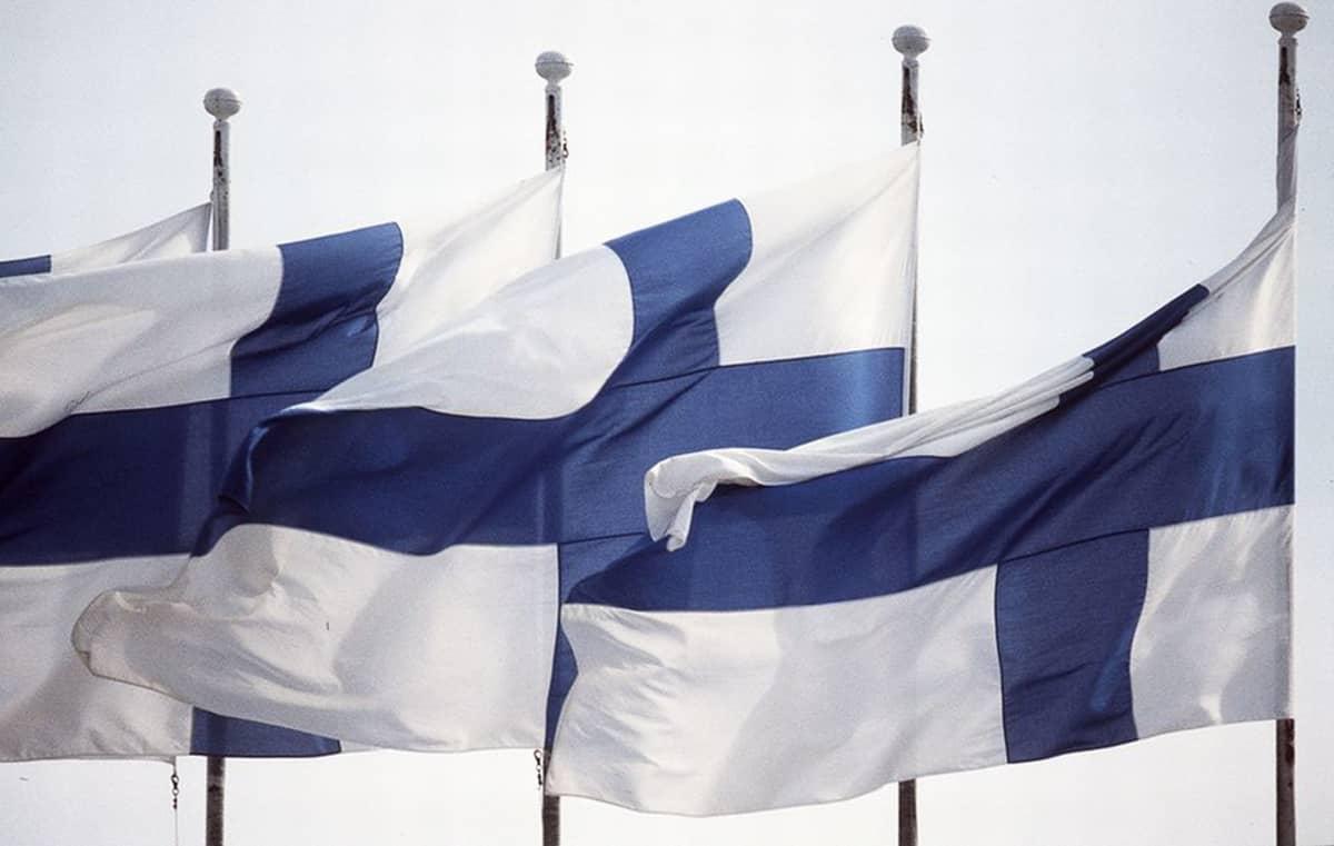 Suomen lippuja