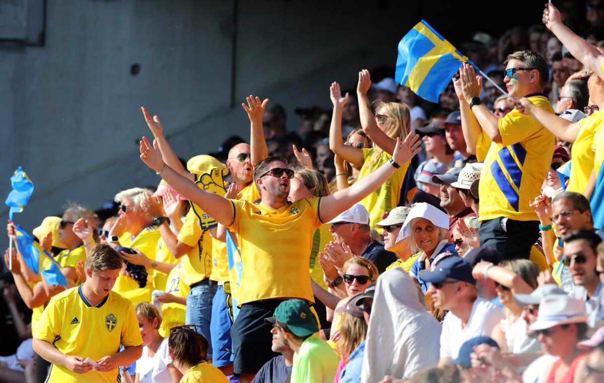 Ruotsi fanit