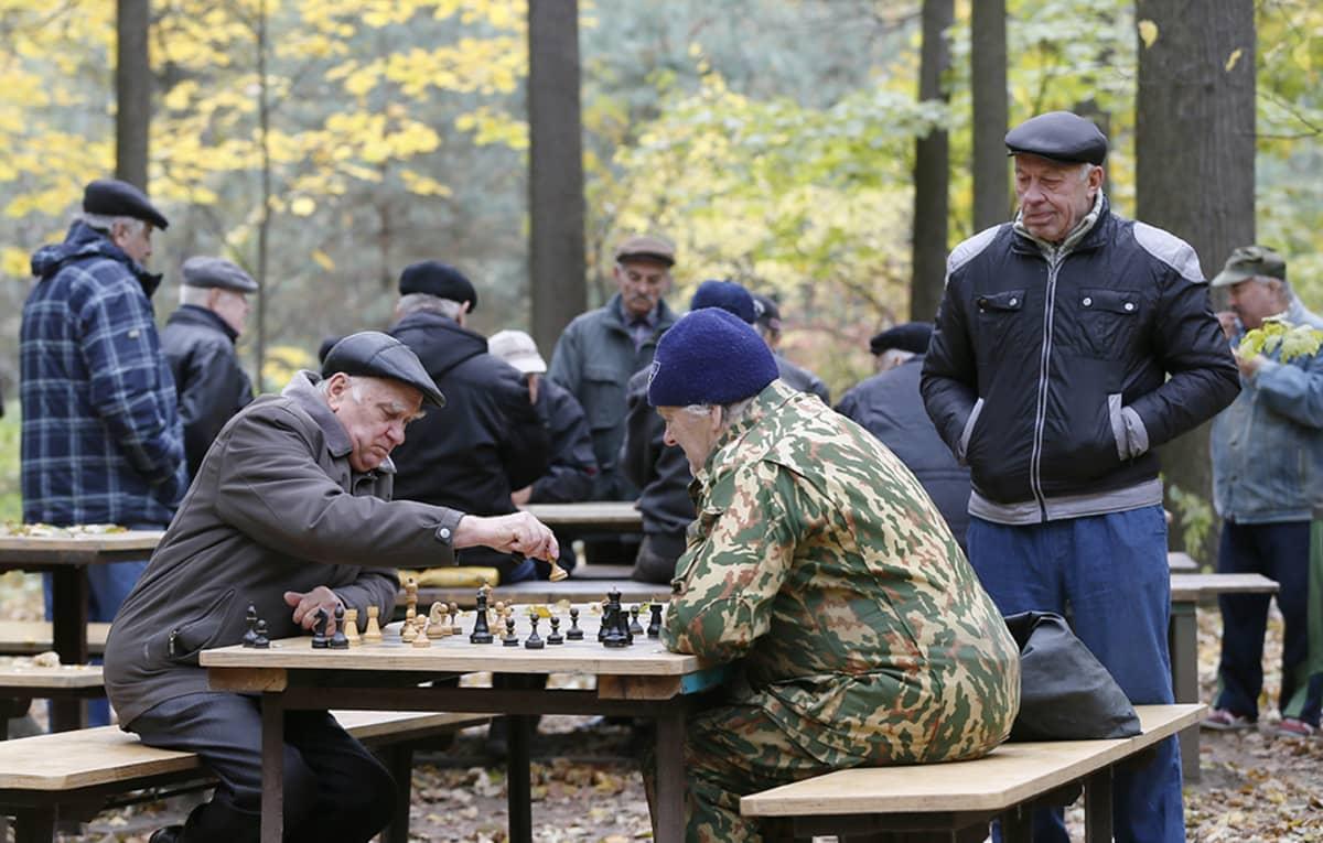 Eläkeläiset pelaavat shakkia Fili-puistossa.