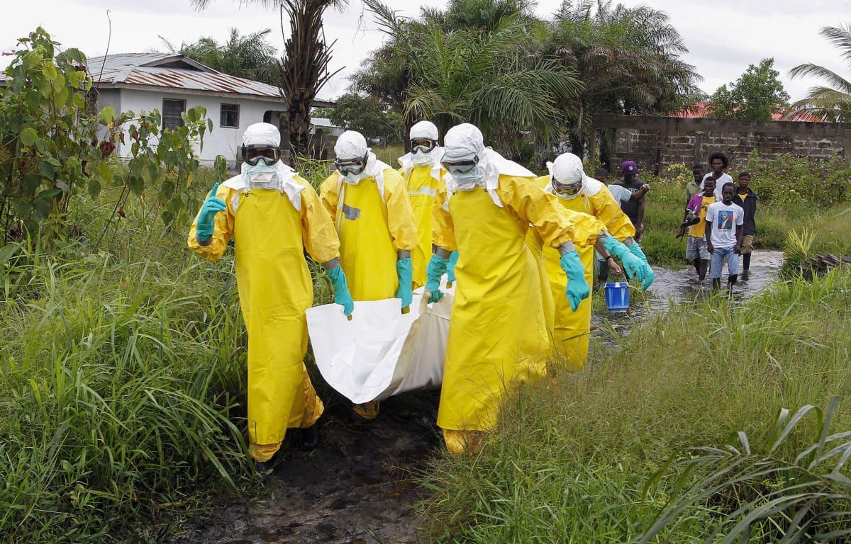Hoitajat kantoivat Ebola-viruksen uhria Monroviassa, Liberiassa syyskuussa 2014.