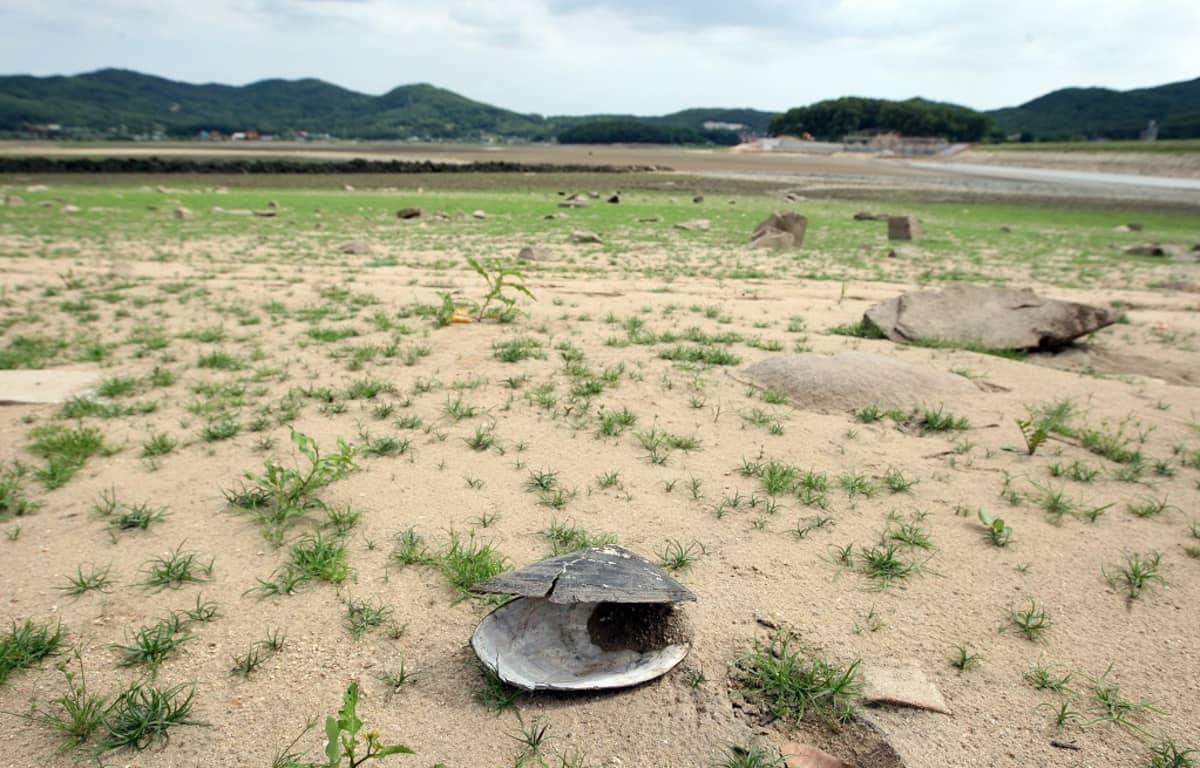 Incheonin säiliö kuivui kesäkuussa 2012 pitkään jatkuneen kuivankauden jälkeen Korean niemimaalla. Erityisesti Pohjois-Korealle ennakoitiin tuolloin vakavaa elintarvikepulaa.