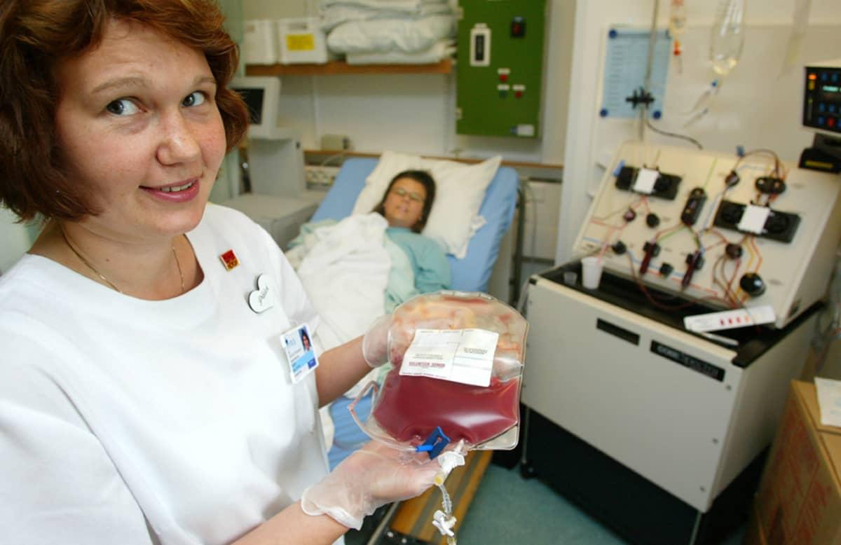 Kantasoluja kerätään verenkierrosta.