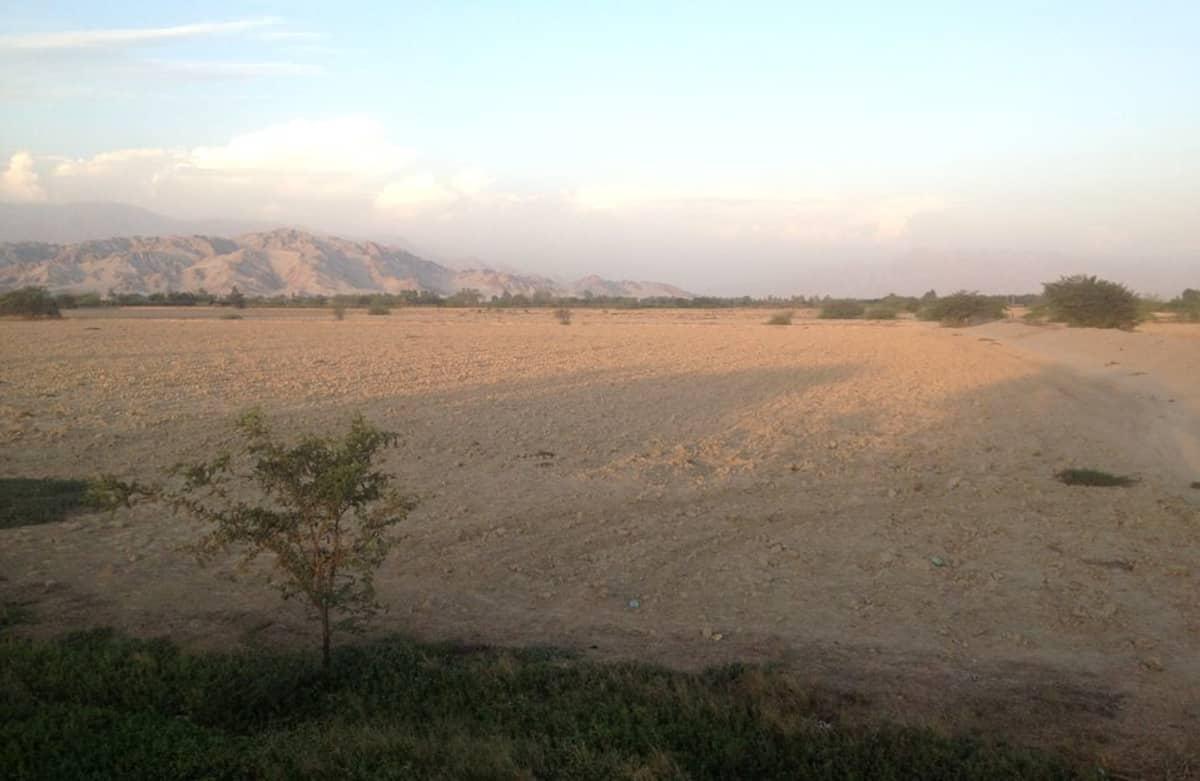 Paikalliset maanviljelijät syyttävät suuria maatalousjättejä maan kuivattamisesta.