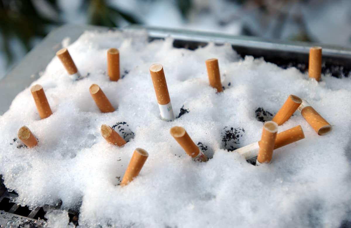 Tupakoita tumpattu lumiseen tuhkakuppiin.