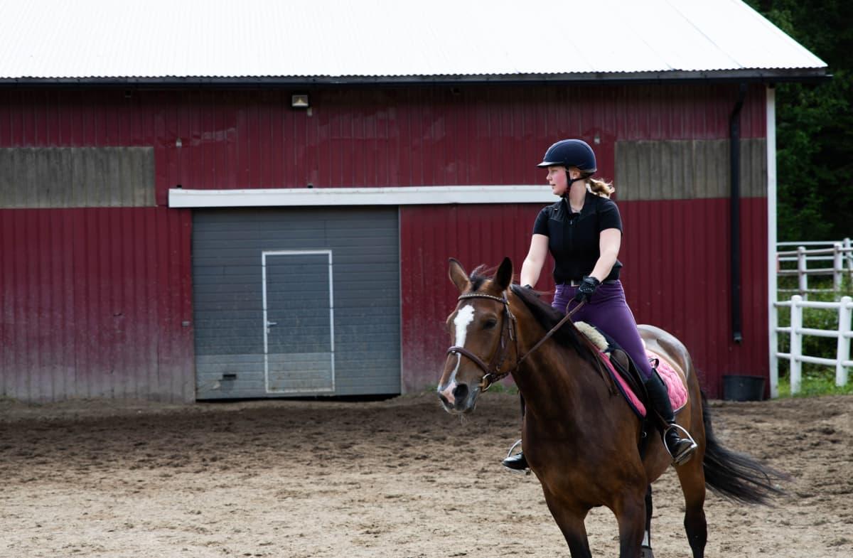 Hevonen ja ratsastaja hiekkakentällä.
