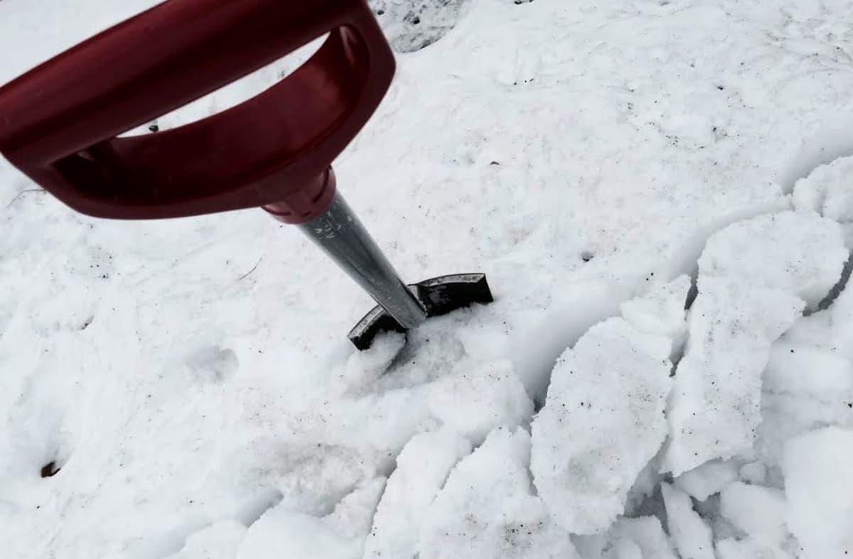 Lapio lumihangessa.