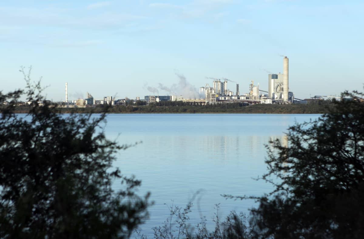 UPM:n ensimmäinen Uruguayn-tehdas valmistui vuonna 2007.