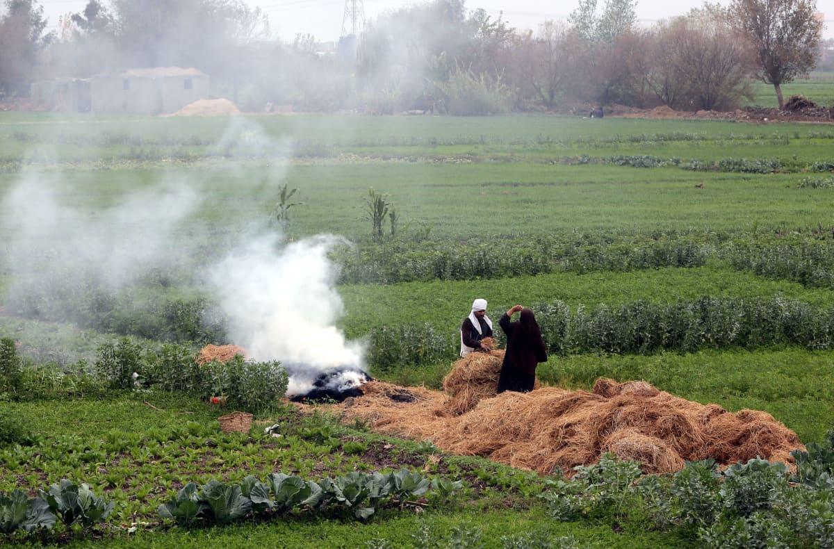 Maanviljelijät polttavat riisin sadonkorjuuroskia