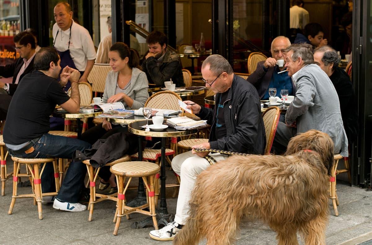 Pariisilainen kahvila.