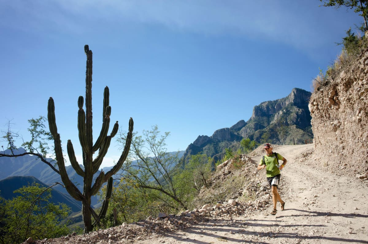 Kaktus ja juoksija Copper Canyon Ultramaratonilla