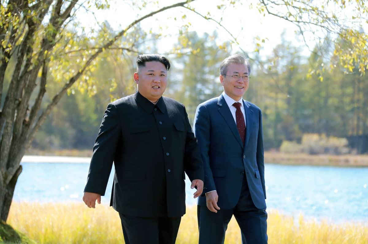 Kim Jong-un ja Moon Jae-in kävelemässä puistossa.