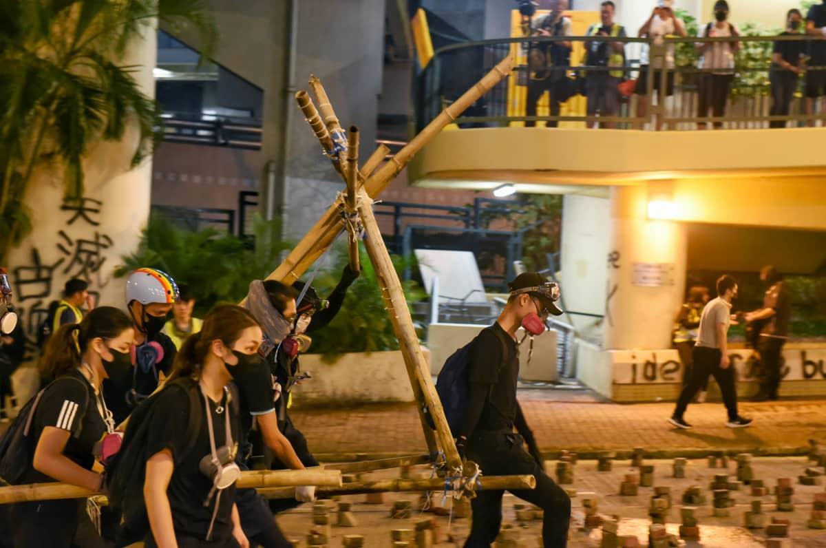 Mielenosoitttajat kantavat itsetehtyä katapulttia.