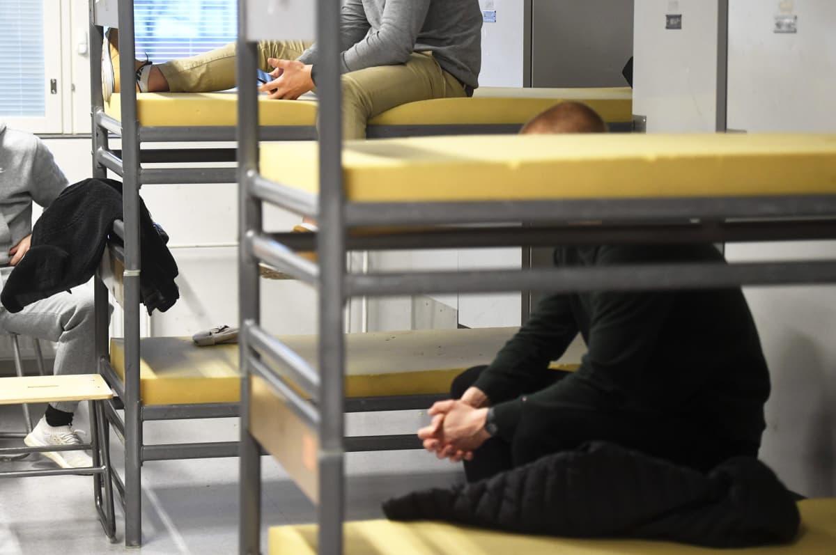 Alokkaita pedeissään Santahaminan varuskunnassa Helsingissä.