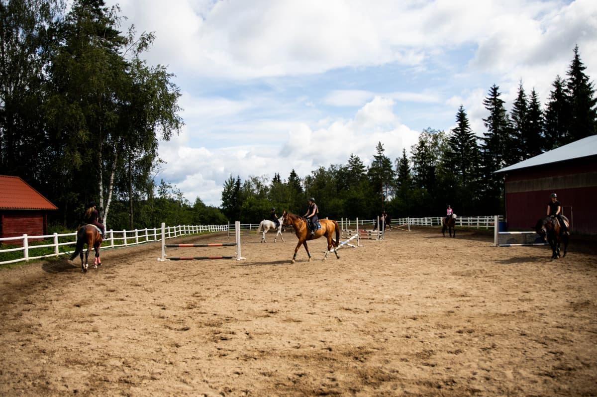 Kuusi ratsukkoa ratsastustunnilla.