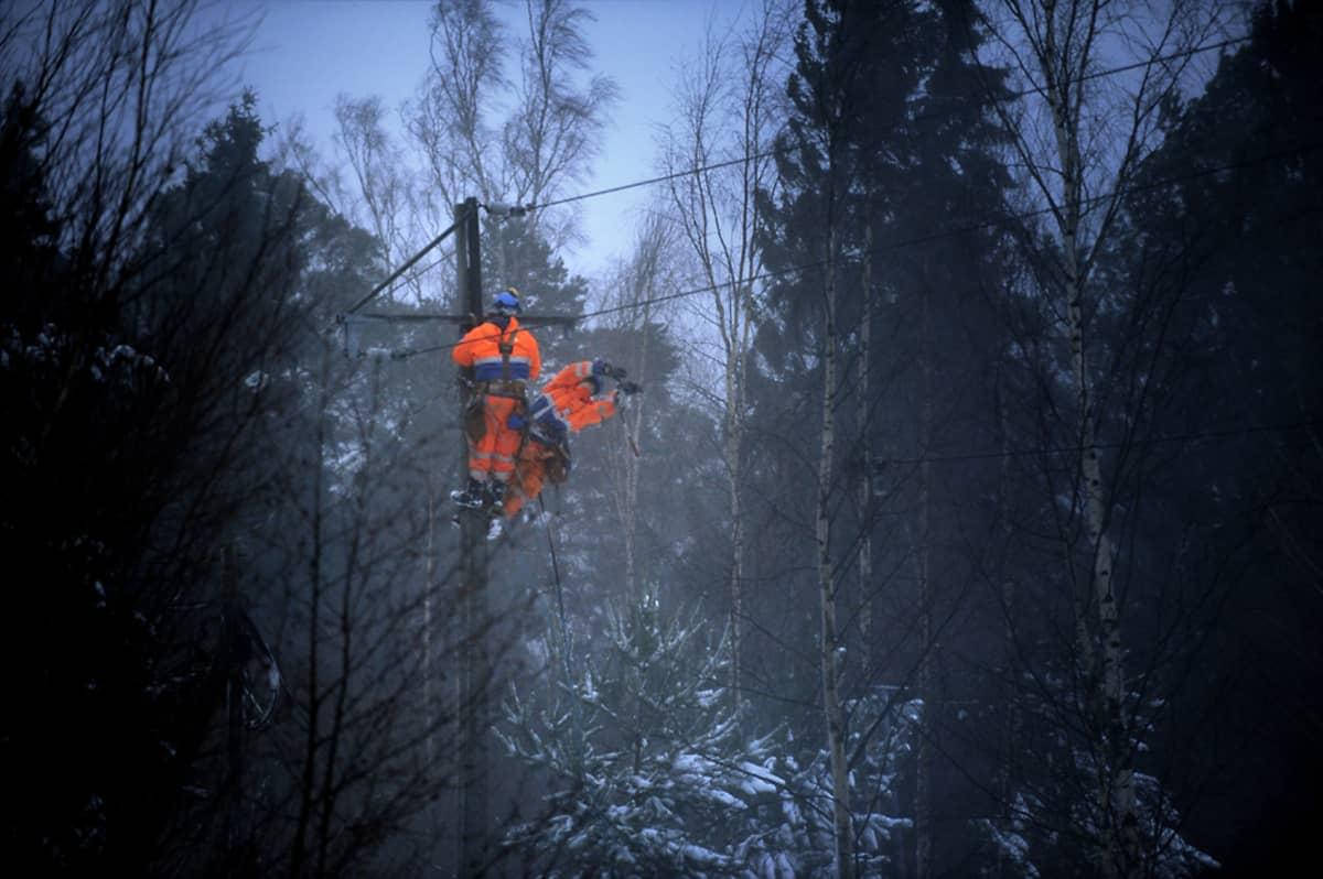 Kaksi korjausmiestä on töissä korkealla sähköpylväässä hämärän metsän keskellä.