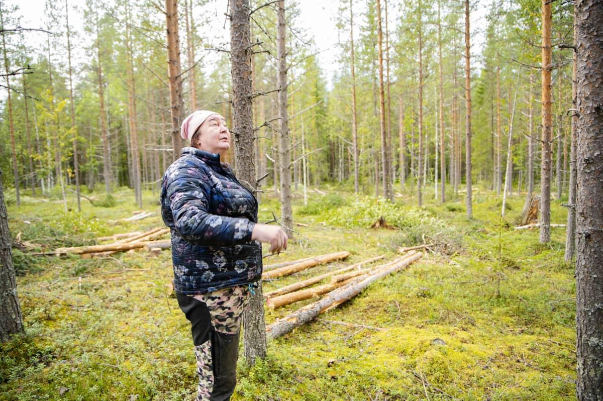 Rilla Porojärvi kertoo tykkylumen tuhoista metsäpalstallaan.