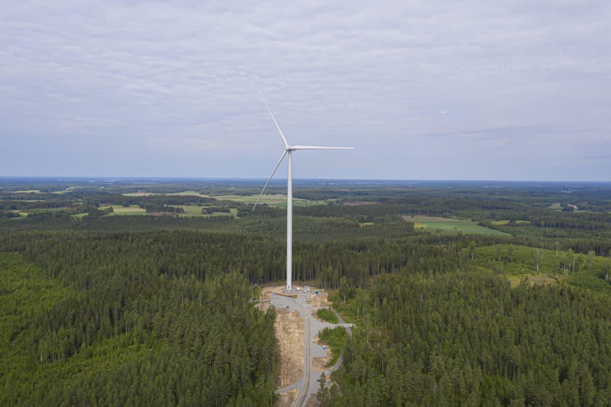 Tyinselän tuulivoimapuistoa ilmasta.