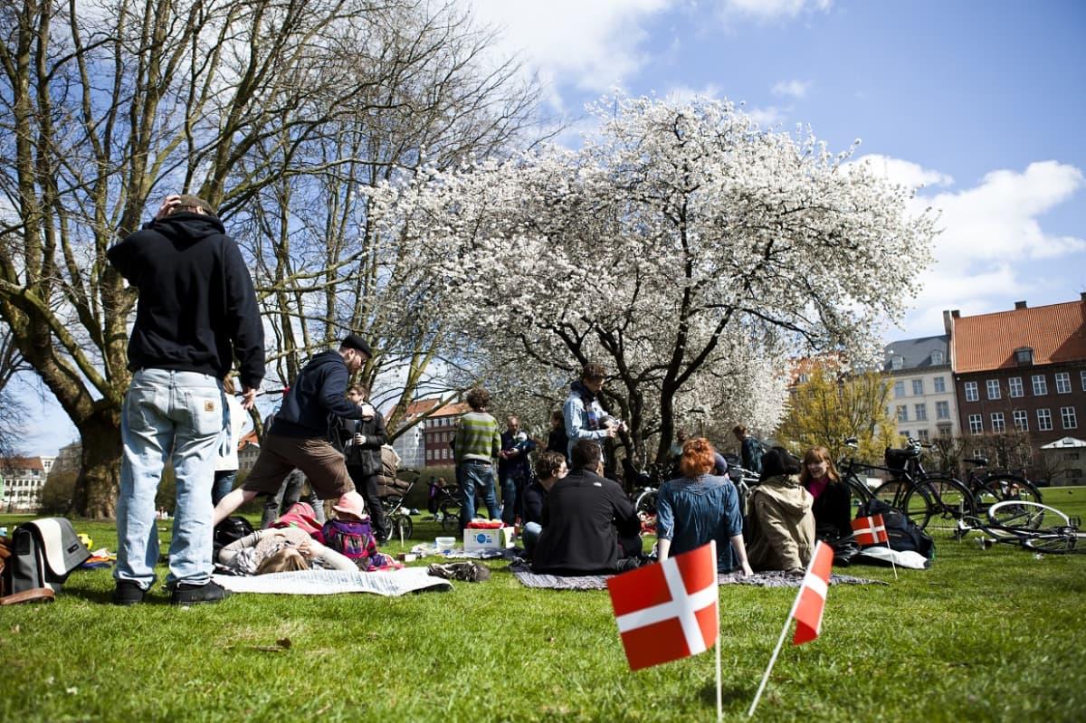 Kuvassa ihmisiä keväisessä puistossa, kukkivan puun alla.