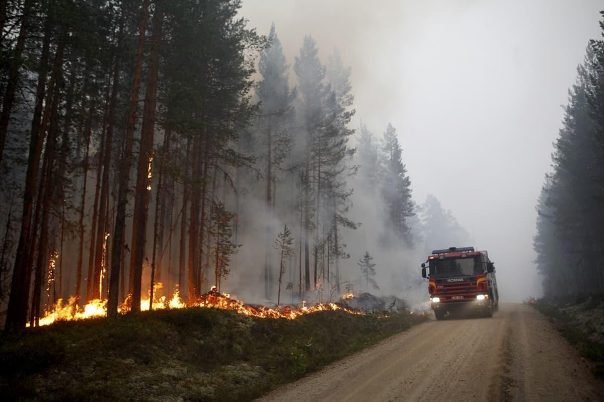 Paloauto ajaa tietä, jonka vieressä metsä palaa.