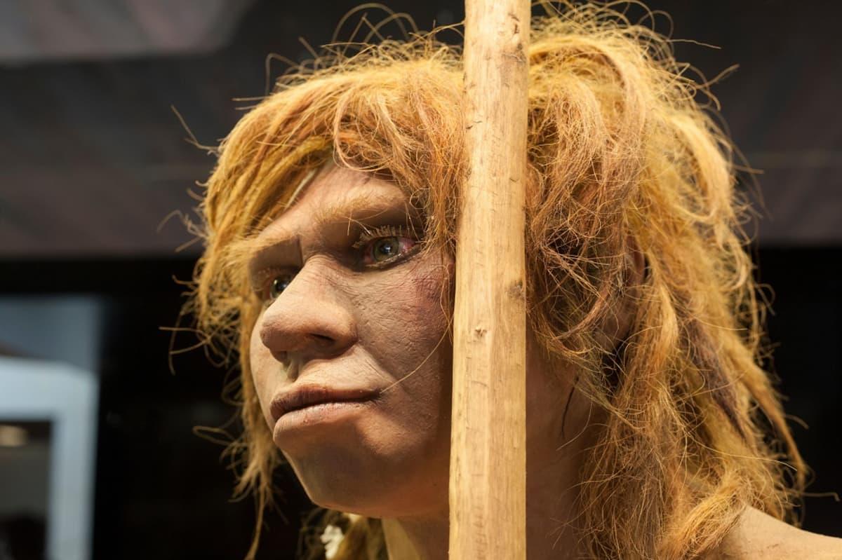 Neandertalalilaisnaisen rekonstruktio Madridin arkeologisessa museossa Espanjassa.