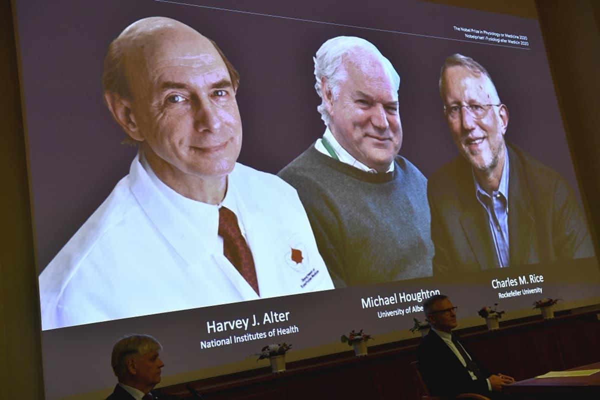 Nobel-voittajien valokuvat valkokankalla.