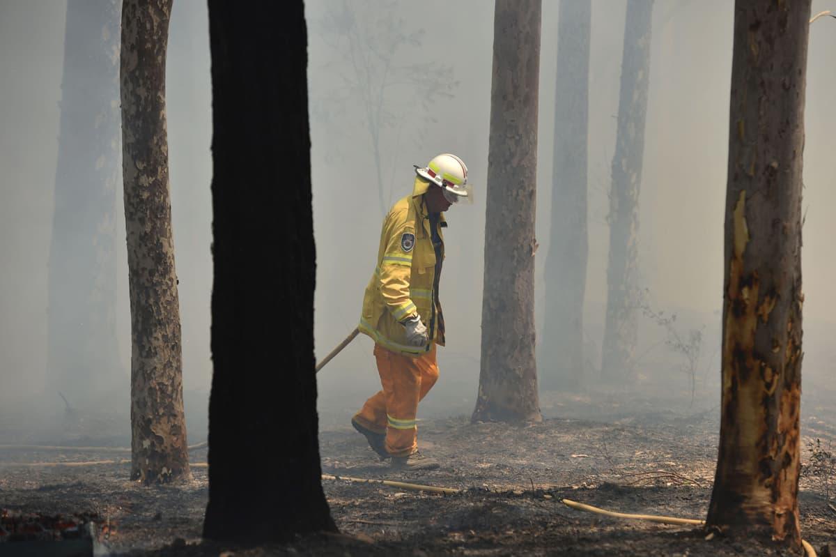 Palomies sammuttamassa paloa Batemans Bayssa.