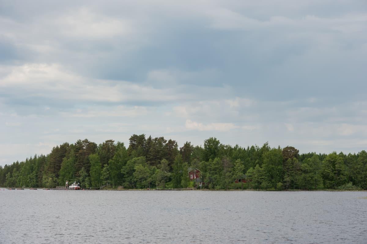 Iivarinsalon saari Kallavedessä.