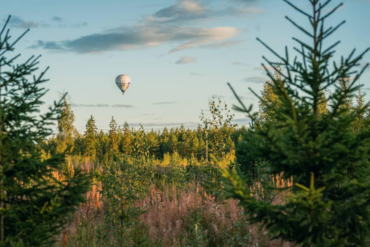 Kuumailmapallo lentää metsän yläpuolella.
