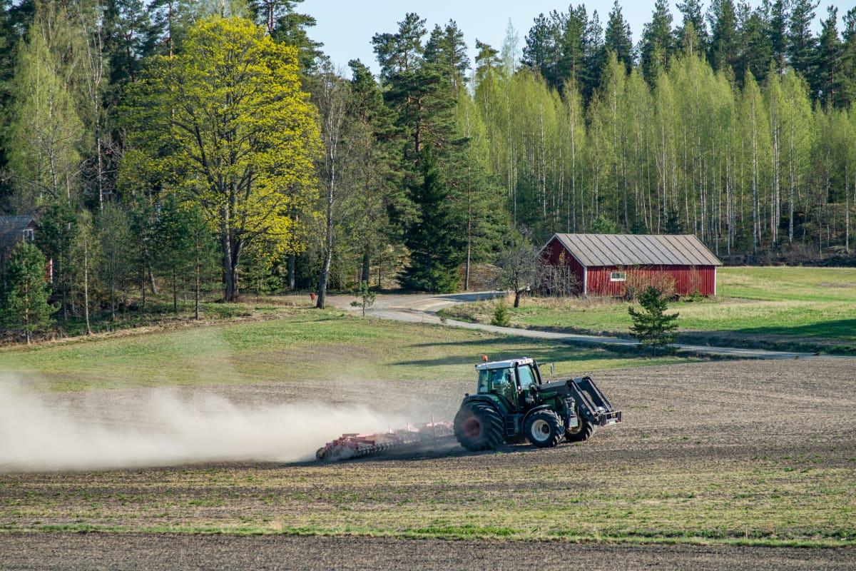 Traktori kyntämässä peltoa keväällä.