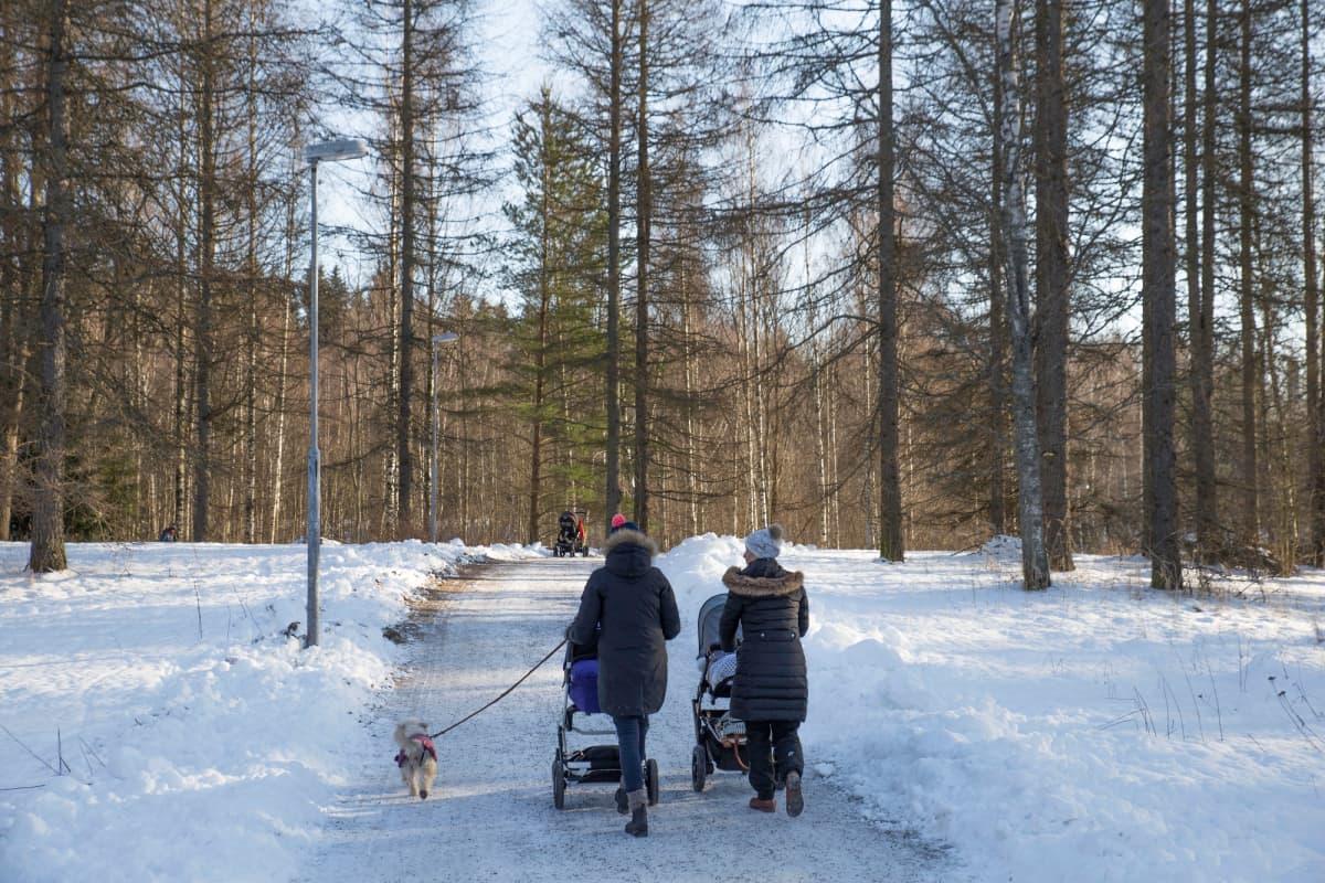 Ulkoilijoita Helsingin keskuspuistossa.
