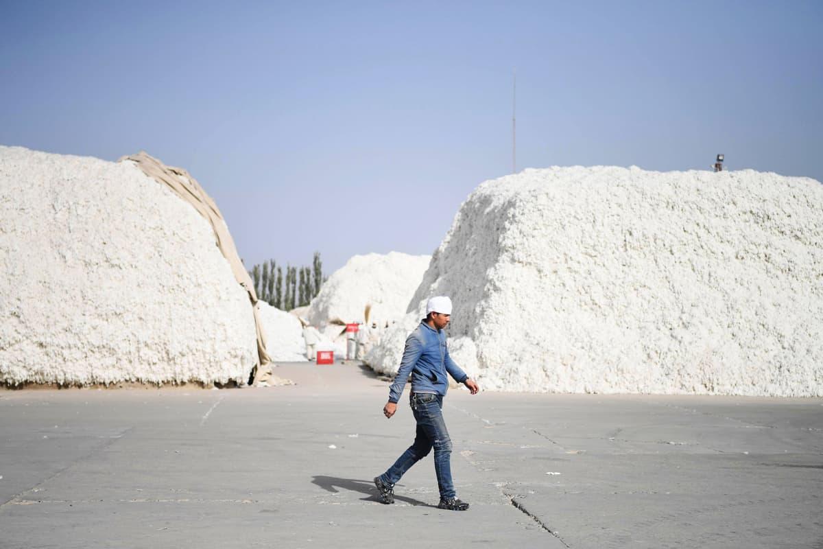 Kuvassa mies kävelee puuvillakasojen keskellä Kiinassa.