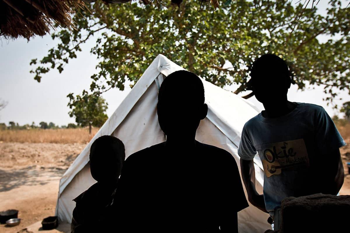 Kolme nuorta poikaa kuvattuna valoa vasten.