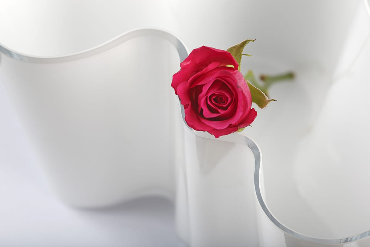 Ruusu Aalto-maljakossa