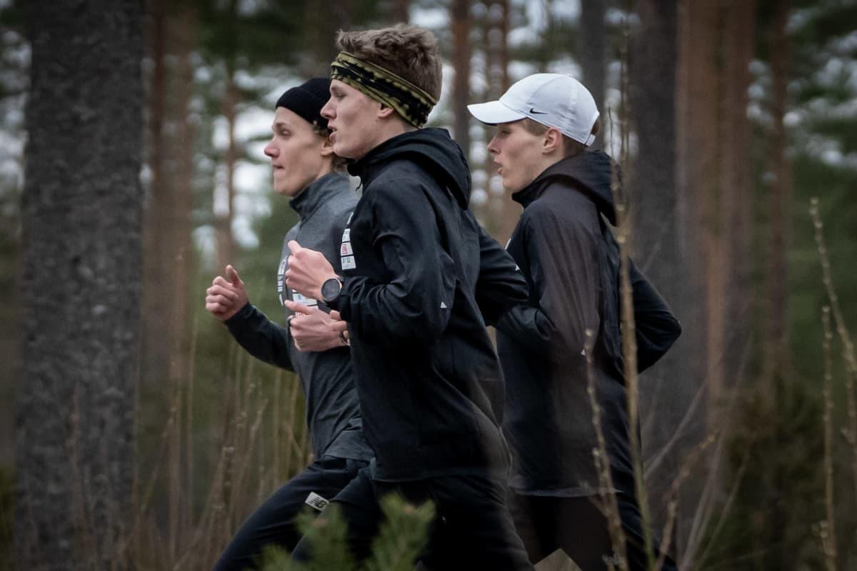 Wilho Hautala, Wäinö Hautala ja Walte Hautala