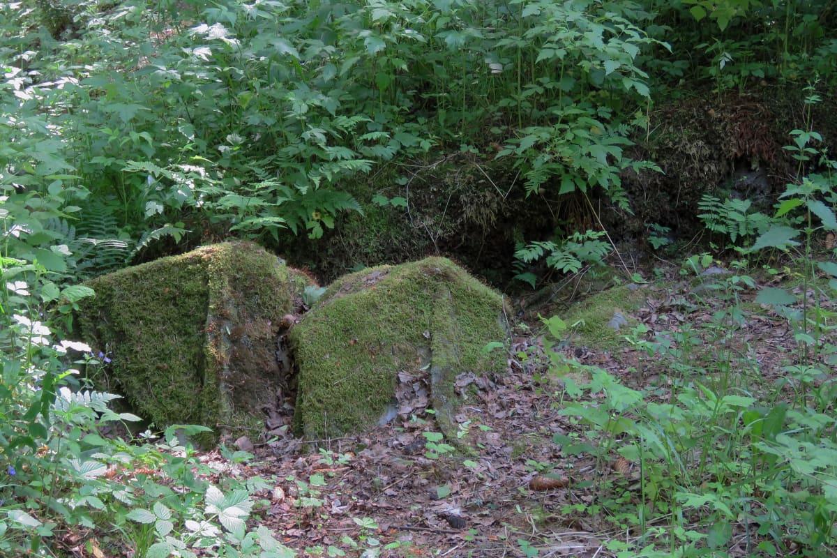 Sammaloituneen kankaan peittämiä kiviä kaivausalueen kulmassa.