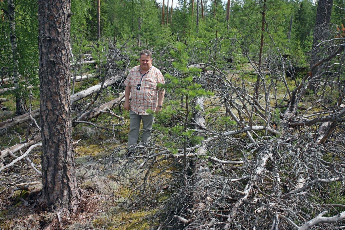 Elveran toimitusjohtaja Arto Nieminen Asta-myrskyn kaatamien puiden äärellä.