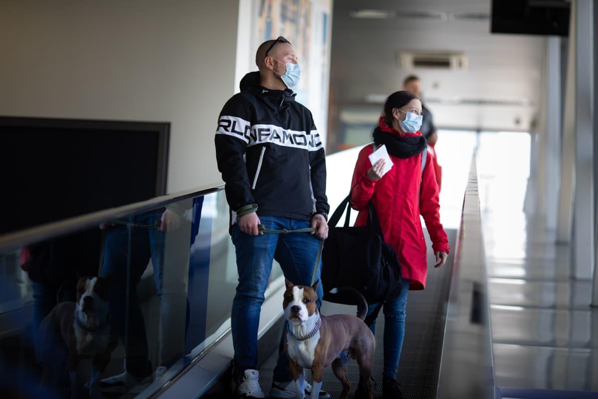 Ljuba Igorova ja Roman Dobrakov saapuivat Helsingistä Tallinnaan Numero Seitsemän -nimisen koiransa kanssa toukokuun puolivälissä.