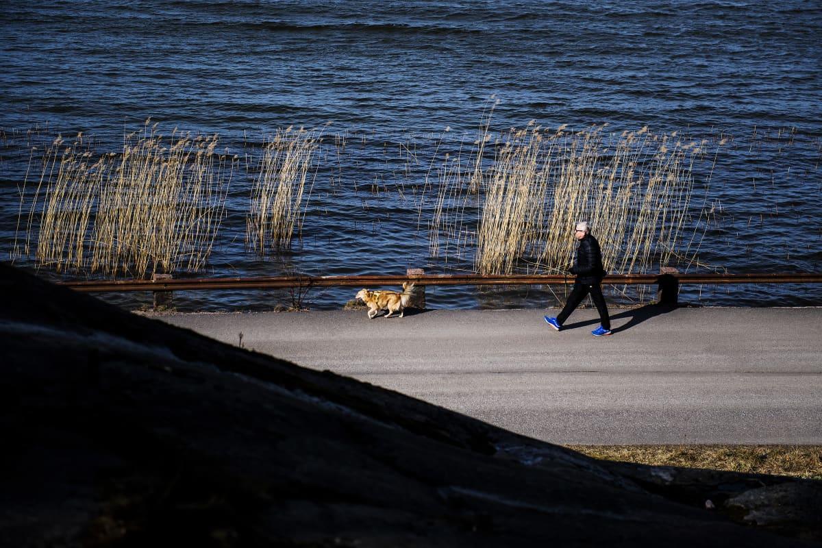 Kuvassa mies ulkoiluttaa koiraa meren rannassa.