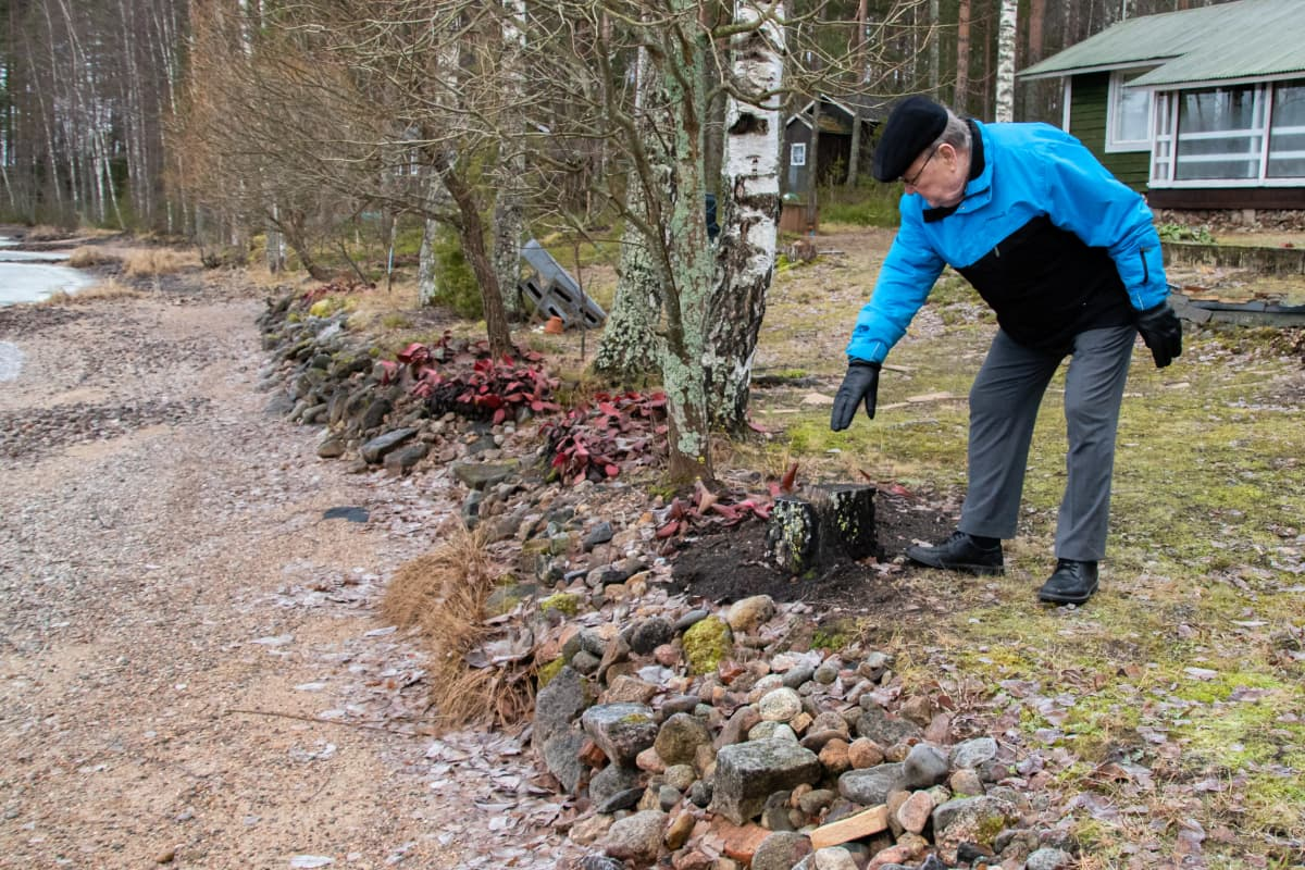 Heikki Kiiha näyttää mökillään Äitsaaressa vanhaa vedenkorkeutta, vesi on metrin alempana kuin normaalisti kuvaushetkellä