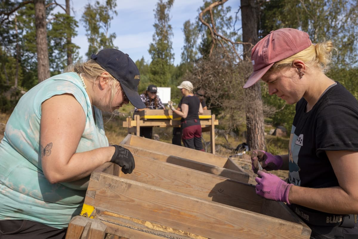 2 henkilöä siivilöi maa-ainesta arkeologisella kaivauksella.
