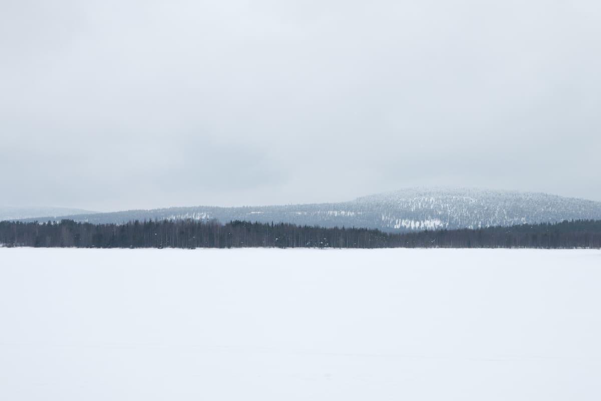 Lankojärvi
