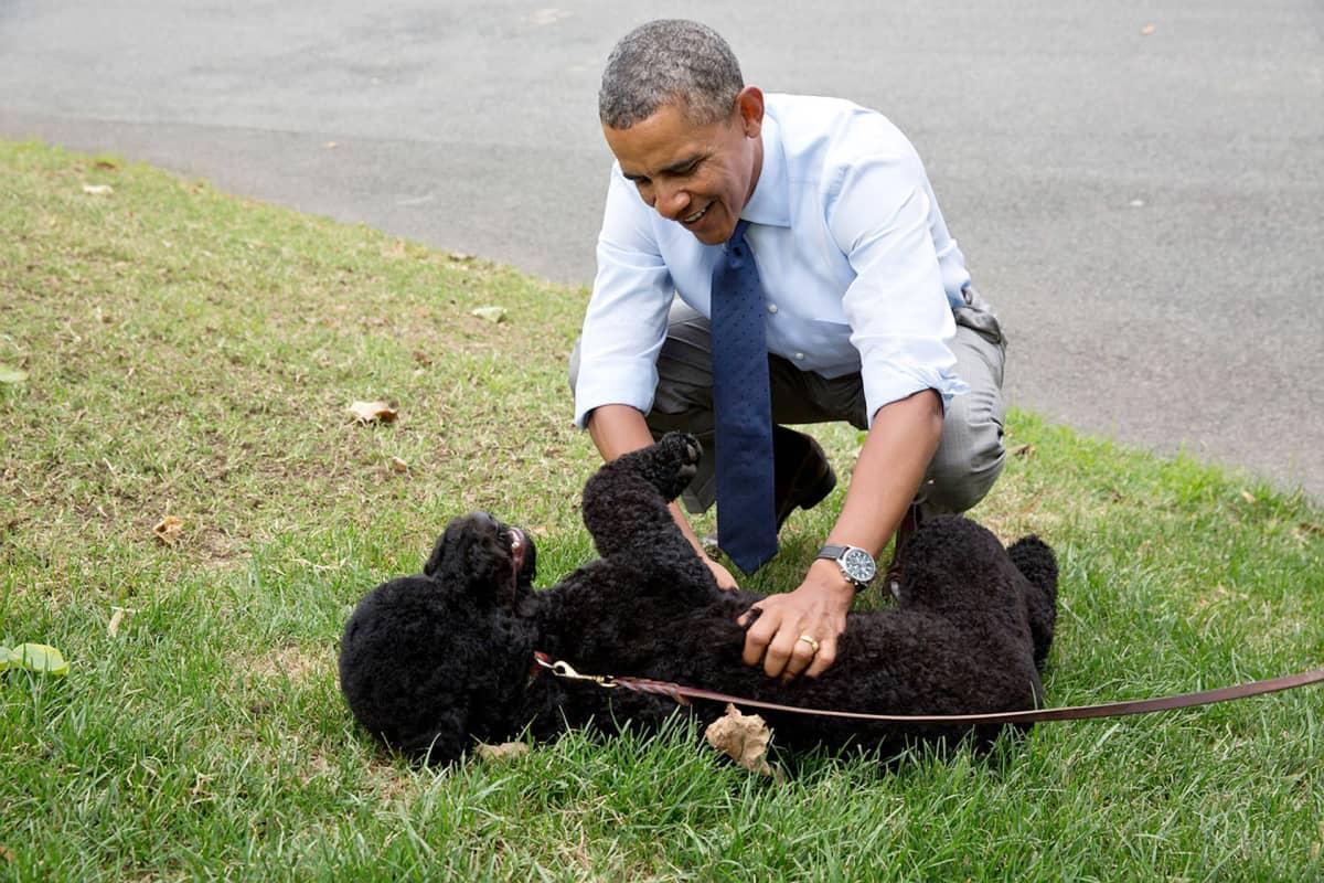 Barack Obama Sunny koiransa kanssa.