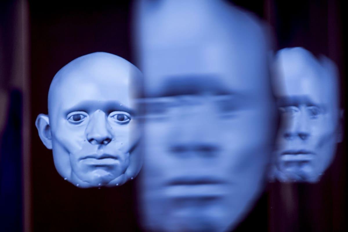 Chimera-installaatio, Levänluhta, Ote Heidi Kuivaniemi-Smithin ja Christopher Rynnin animaatiosta.