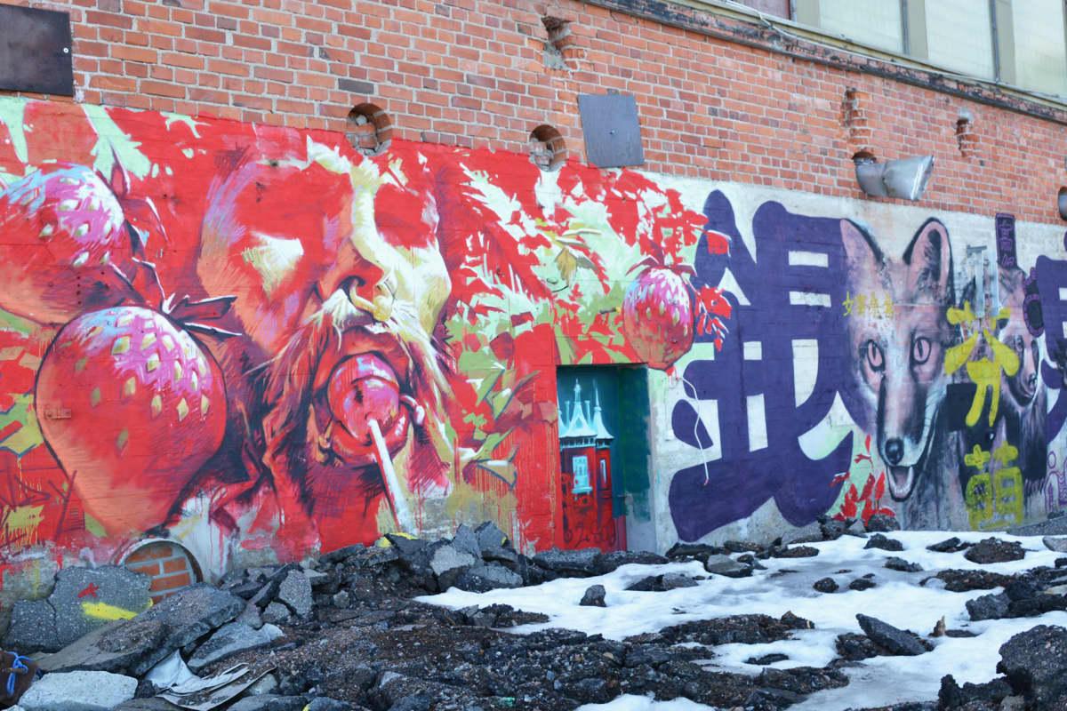 Seinämaaalaus Tampereen Hiedanrannassa