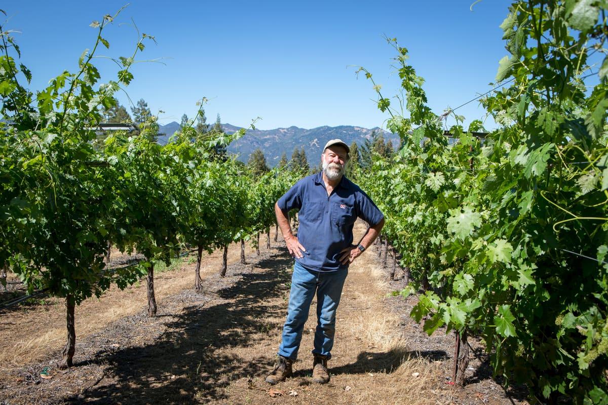 Stuart Smith seisoo viiniviljelmiensä keskellä