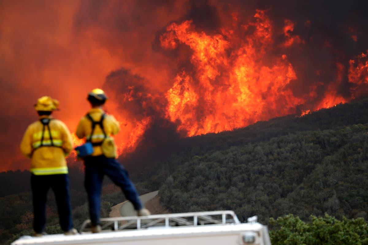 Palomiehet katsovat maastopaloa kaukaa