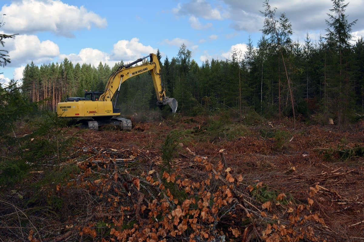 Tuulipuiston maanrakennustöitä Lakiakankaalla Isojoella.
