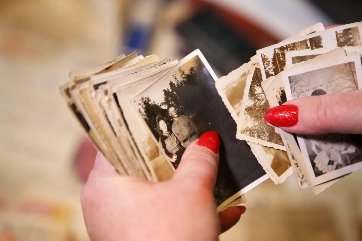 Käsilaukusta löytyneitä valokuvia.