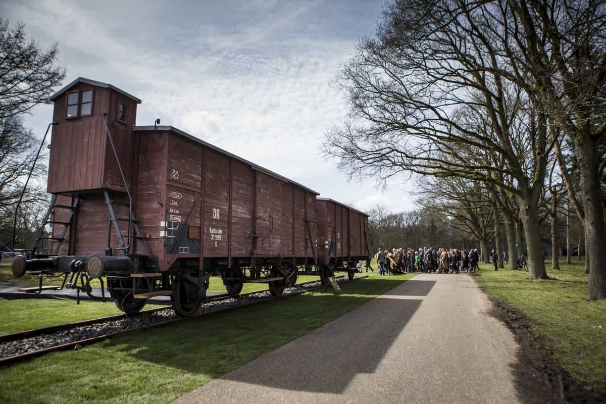 Kaksi puista junavaunua puistossa.